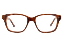 Colors In Optics C1005 TSTN Tortoise
